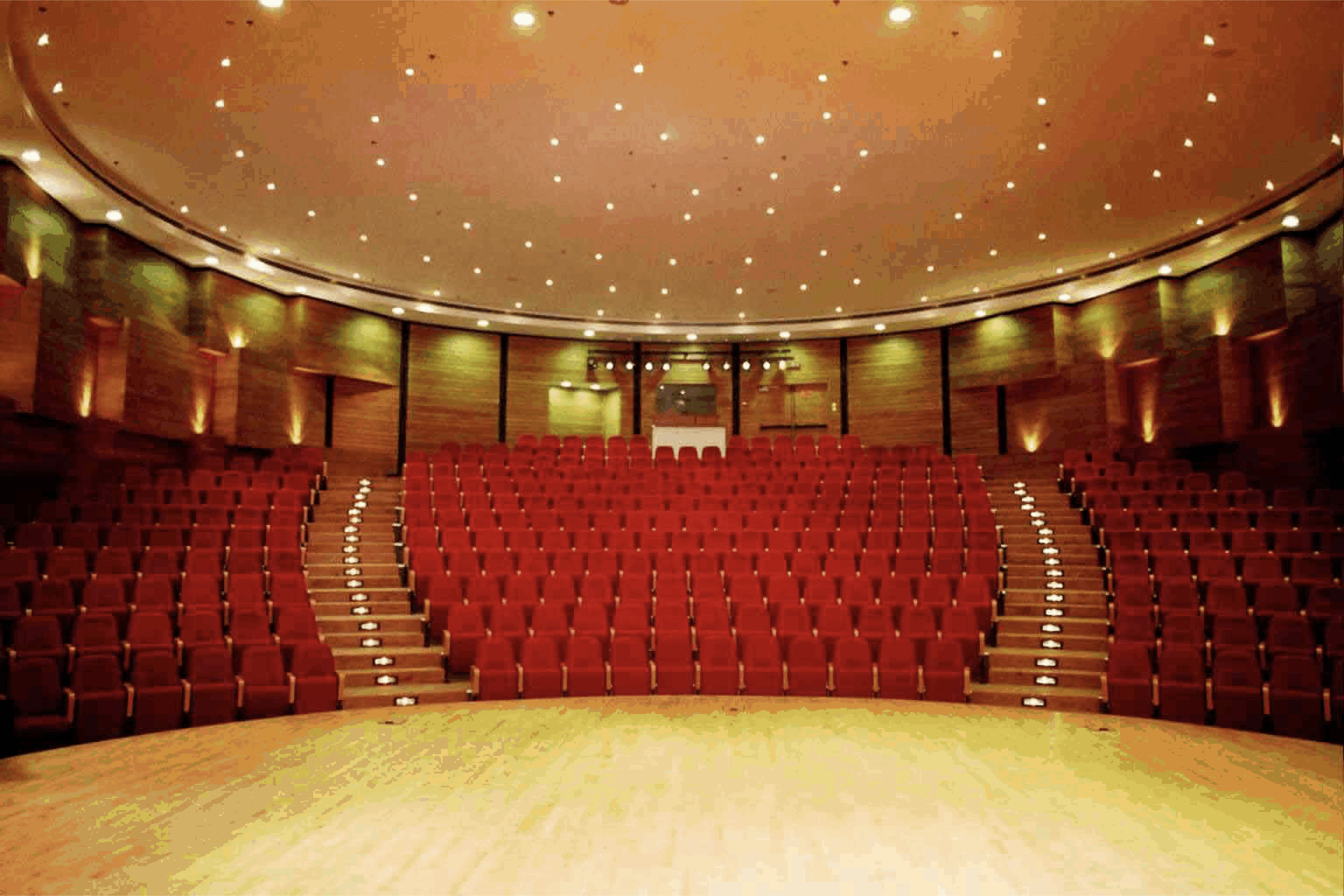 תמונה של אולם הקונצרטים